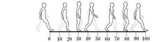 股関節痛み原因治療 歩行周期