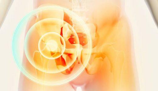 鼠径部痛症候群の痛みと股関節の症状を区別する