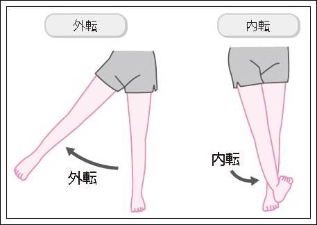 股関節の外転内転イラスト 外転は足を外に開く運動を意味します。内転はその逆で、内に閉じる運動のこ