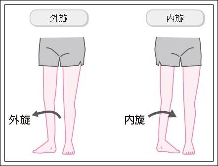 股関節の外旋内旋イラスト