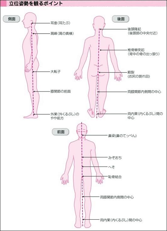 身体の軸はどこにある?11