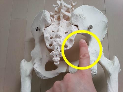 股関節外旋筋のストレッチ1