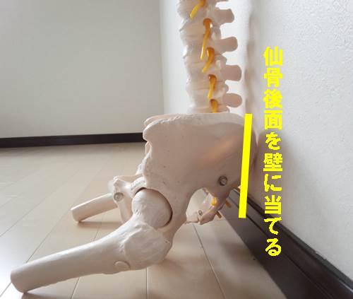 f股関節内転筋のストレッチの正しい方法21
