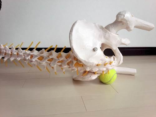 股関節外旋筋のストレッチ4