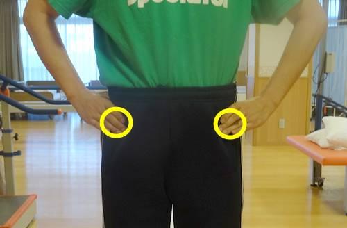 上前腸骨棘とは?場所と付着する筋肉、痛みの原因を解説6