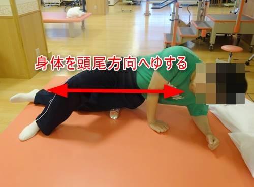 大腿筋膜張筋骨模型ダイレクトストレッチ14