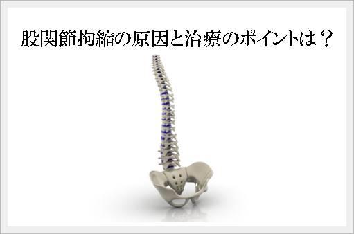 股関節拘縮の原因と治療のポイントは?