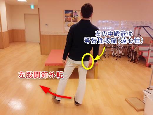横歩きリハビリの効果と中殿筋の筋活動は?8