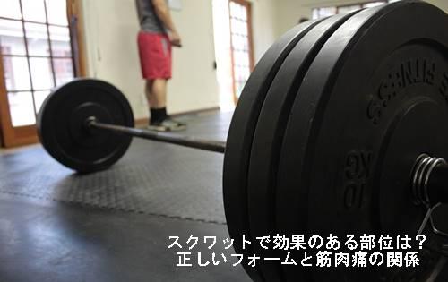 スクワットで効果のある部位は?正しいフォームと筋肉痛の関係