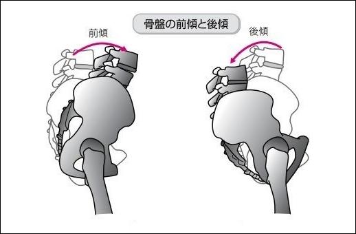 骨盤の動き前傾と後傾