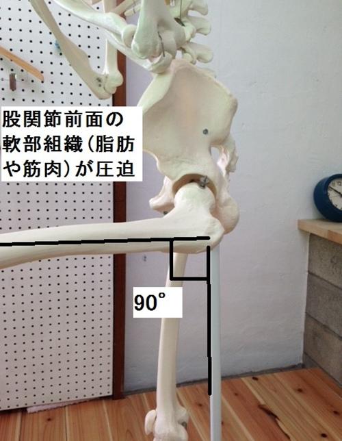 しゃがむと股関節が痛い!その原因はどこにある?3