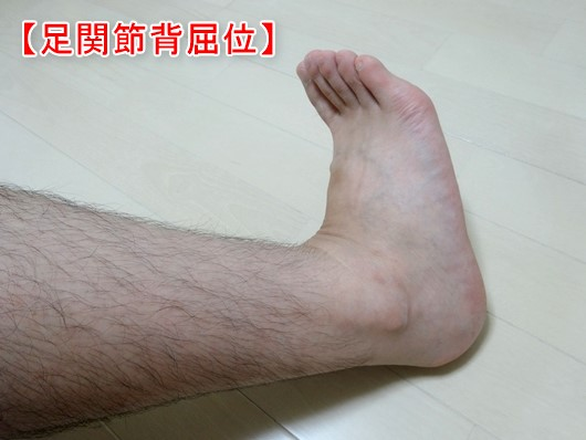 足関節背屈位1