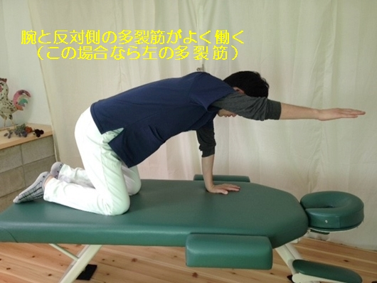 しゃがむと股関節が痛い!その原因はどこにある?6
