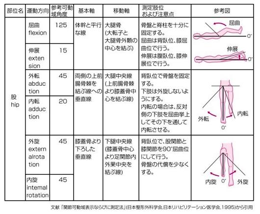 股関節の可動域ROM