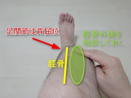 前脛骨筋の触診