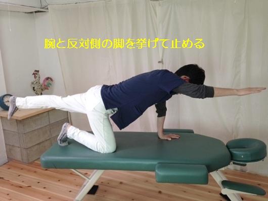 しゃがむと股関節が痛い!その原因はどこにある?8