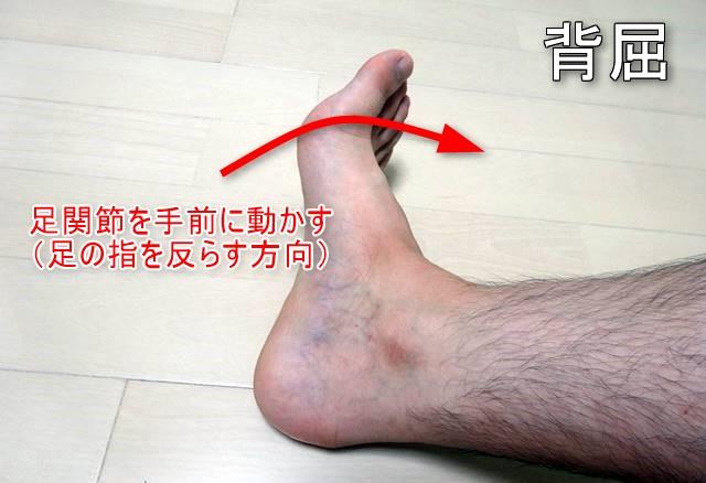 足関節背屈5