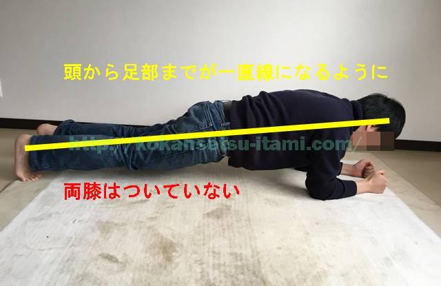 体幹トレーニング2フロントブリッジ両膝つかない
