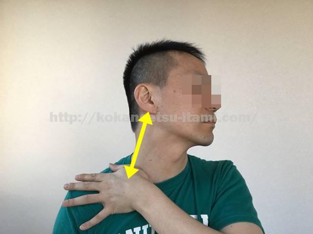 胸鎖乳突筋ストレッチ図イラスト3