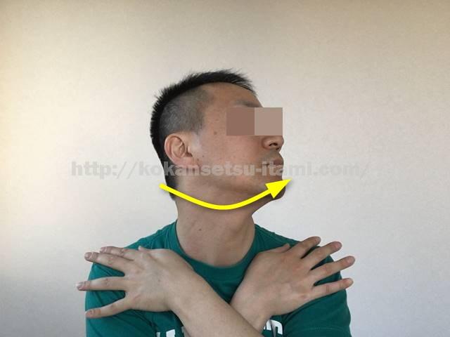 胸鎖乳突筋ストレッチ図イラスト6