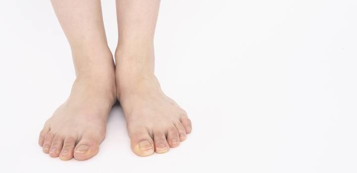 足の骨の解剖を図でやさしく解説!どんな名前の骨があるの?